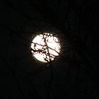 Full Moon March 2012  (please view larger) by Pbratt79