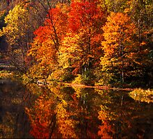 Fall colors and reflection - 235 by ©  Paul W. Faust