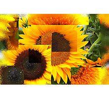 Glass Flowers Photographic Print