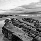 """Cheswick Black Rocks"" by Darren Sharp"