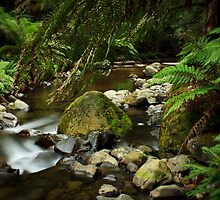 Little Slice of Heaven_Liffey Falls by Sharon Kavanagh