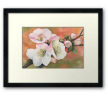 Spring Magic Framed Print