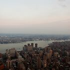 the Hudson River Skyline by Marijke Welch