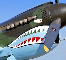 P 40 Warhawk, Flying Tiger by SuddenJim
