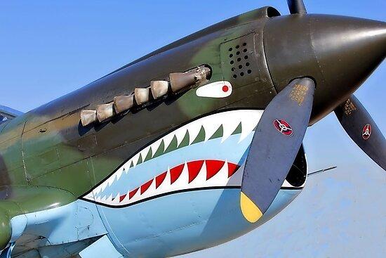 P 40 Warhawk, Flying Tiger by SuddenJim