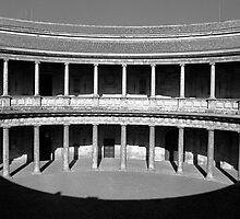Alhambra Shadow by James2001