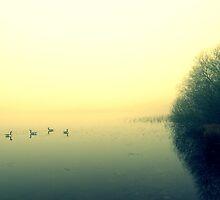 morning over Priddy by davrberts