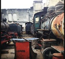 Train Gravyard in Havana by eyeshoot