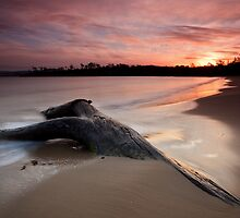 Randalls Bay Sunset #10 by Chris Cobern