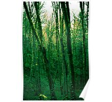 Green machina Poster
