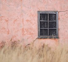 Peach House Detail - Grand Teton National Park by A.M. Ruttle