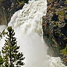 Upper Yellowstone Falls  by jeff welton