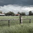 Silos and Storms - Bolong Rd, Bolong NSW by Martin Lomé