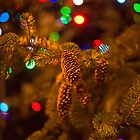 Pine cone with Christmas lights by Jose Vazquez