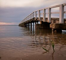 Grantville Jetty #1 by Rosie Appleton