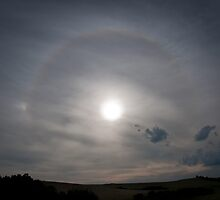 Kilcunda Halo by Rosie Appleton