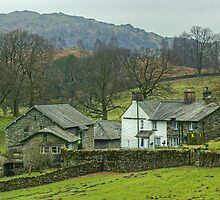 A Walk By Mere,Tarn and Water - The Farm Near The Tarn by Jamie  Green