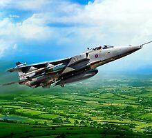 Royal Air Force Jaguar by Bob Martin