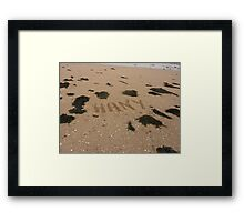 Guess Who Has Been To The Beach Again?? Framed Print