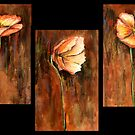 Three Poppies  (VIEW LARGE) by deborah zaragoza