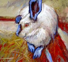 Easter Rabbit by Cameron Hampton