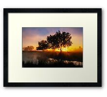 Buttercup Sunrise Framed Print