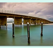 Forster Blue  by kevin chippindall