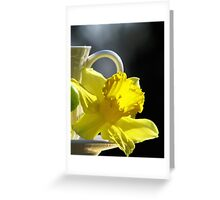 A Jonquil Morning Greeting Card