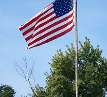 Old Glory by pixhunter