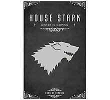 House Stark Photographic Print