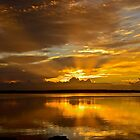 Golden Day. (sunrise ) by Julie  White