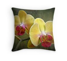 Yellow Moth Orchid - Phalaenopsis Throw Pillow