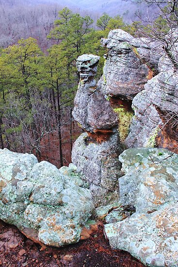 Pedestal Rocks Scenic Area, Pelsor, AR - Arkansas, Ozarks Region by Carolyn Wright
