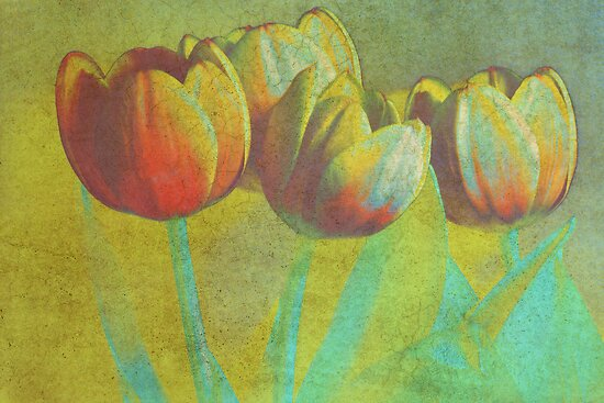 Dancing Tulips by Karen Lewis