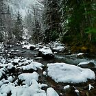 Snow At Smith River by Charles & Patricia   Harkins ~ Picture Oregon