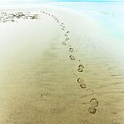 Footsteps in the Sand by Sarah Walters