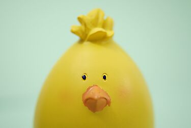 Blank Easter Chick  by Andrea Hurley
