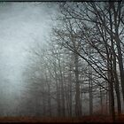 Trees in Fog by Debra Fedchin