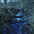 The River Nidd by WatscapePhoto