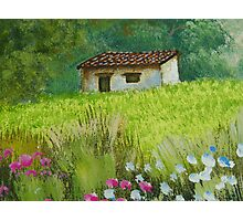 Peaceful House on Meadow Photographic Print
