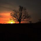 Glorious eve... by linmarie