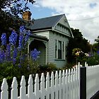 Cottages of Tasmania by Gabrielle  Lees