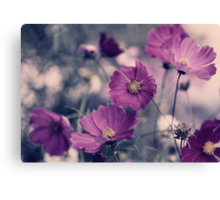 A Garden of Purple Canvas Print