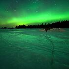The auroras by Samuel Glassar