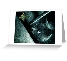 The abyss cat Greeting Card