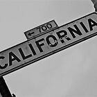 California Sign by Eirinn