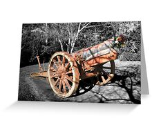 Now silent cannon. Greeting Card