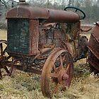 Fordson Tractor  by John  Kapusta