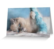 Playtime with Chianti Greeting Card