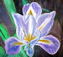 Iris by Karen L Ramsey